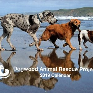Dogwood Animal Calendar